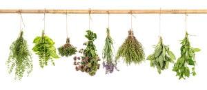 herbshanging-essential oil