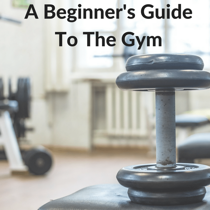 beginners guide to the gym